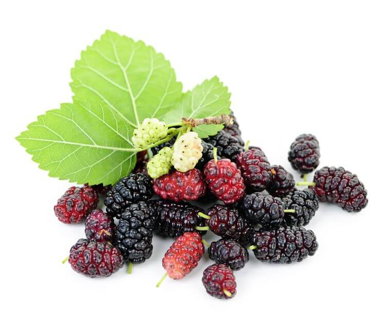 Why You Need Mulberry Extract in Your Diet for Heart Health