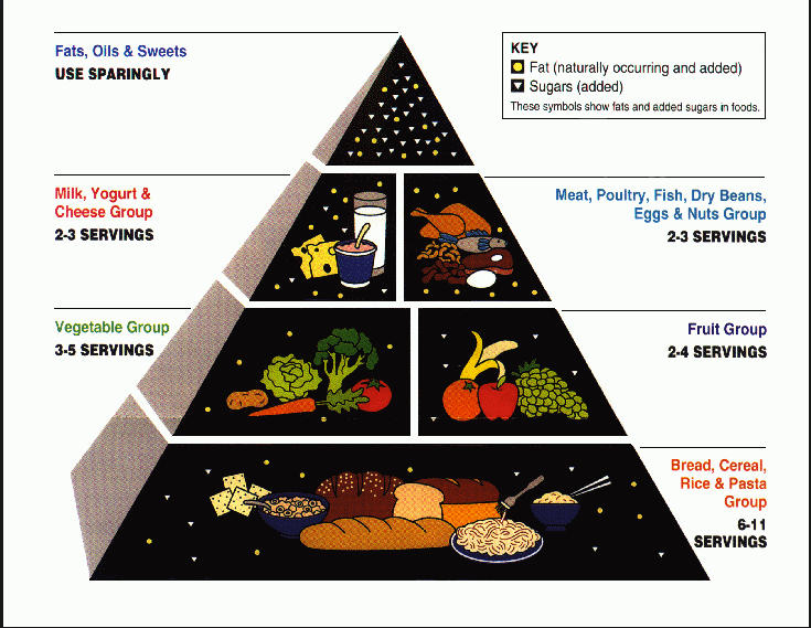 Food pyramid | Gundry MD