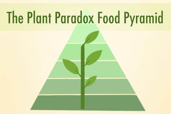 "Dr. Gundry's New Food Pyramid for Vitality (""The Plant Paradox"" diet)"