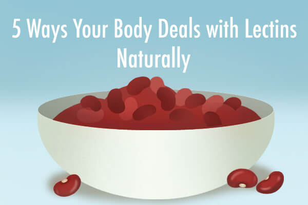 5 Ways Your Body Deals with Lectins Naturally