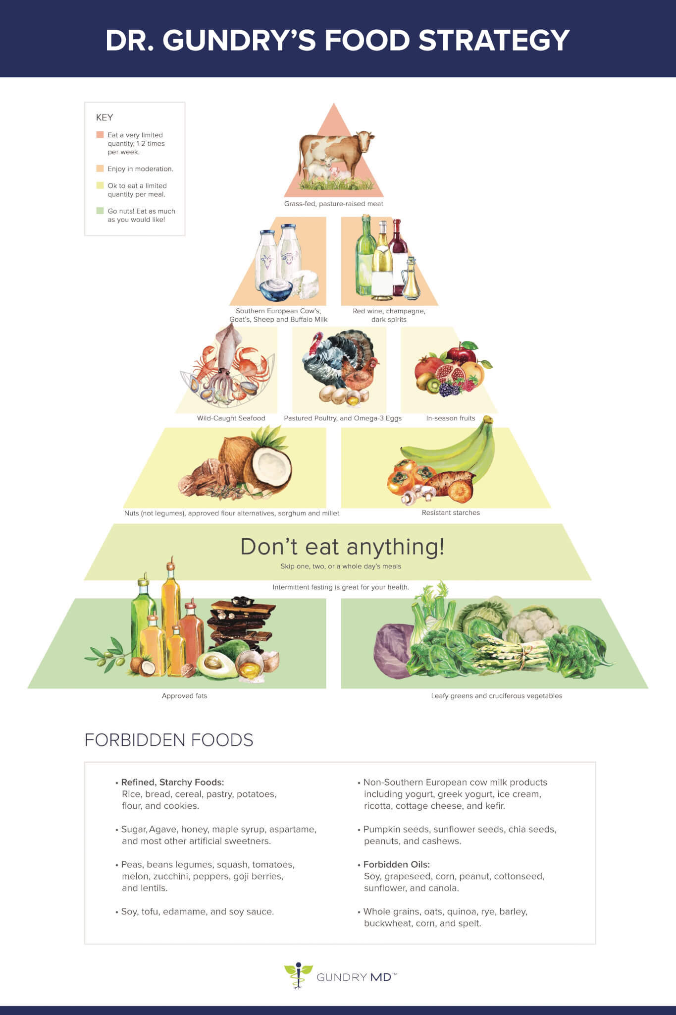 dr gundry's food strategy infographic