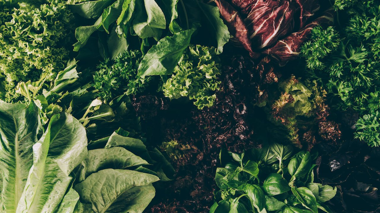 Green Leafy Vegetables | Gundry MD