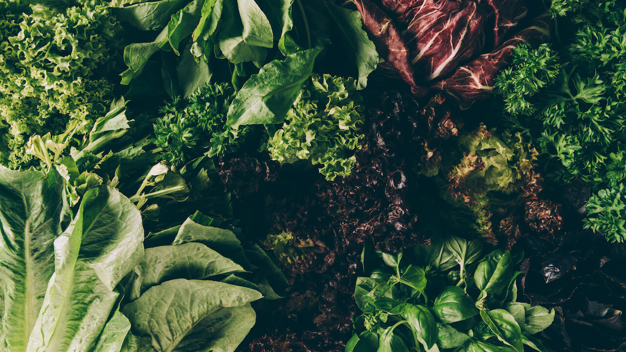 Green Leafy Vegetables May Slow Cognitive Decline