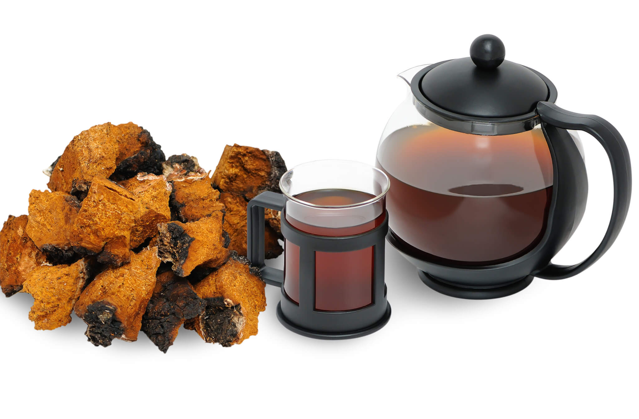 Chaga Mushroom – Side Effects That You Must Know